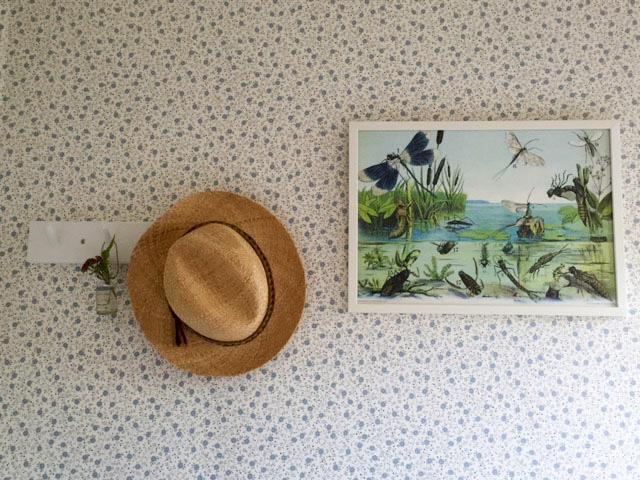 knoppbräda, iris hantverk, stråhatt, skolplansch, grunne, sandbergs tapeter, sandberg wallpaper, blommig tapet, somrig tapet, blåblommig tapet,